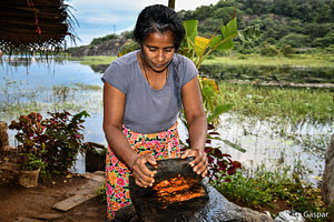 Sri Lanka, village tour
