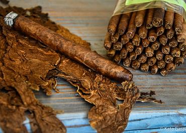 Látogatás egy szivar manufaktúrában – Dominika