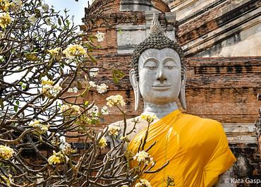 Színek és álmok Thaiföldről