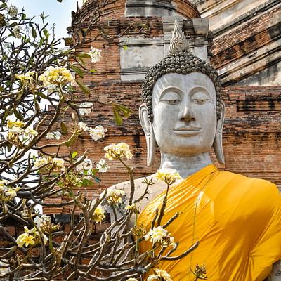 Színek és álmok Thaiföldről - Kubovics Villő írása